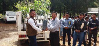 Entrega de 300 plantas frutales de IXEE RIDII S.C. a la UIEG